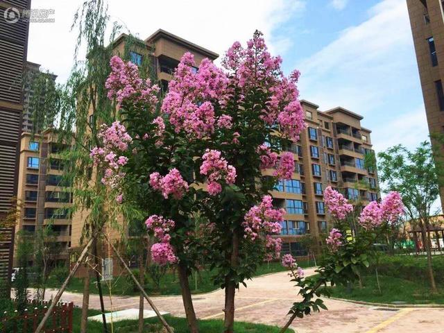 江山私境国宅大城 九境城于自然中追寻价值
