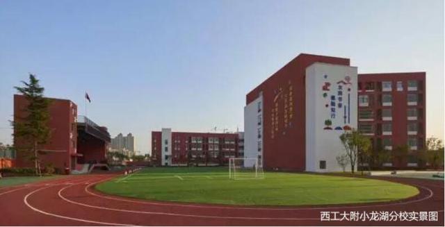 每年近50 的清华北大生 都来自同一个地方 房产西安站 腾讯网