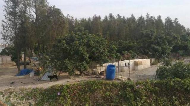 黄杨河湿地公园建设推进遇阻 大家都来评评理!