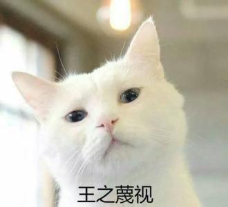 德阳购房者自讨苦吃典型案例,违约给开发商赔钱!
