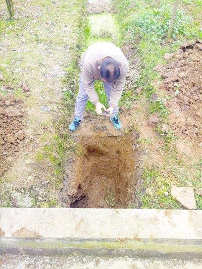 绵竹某地挖天然气管道 一铲子下去挖出宋代古墓