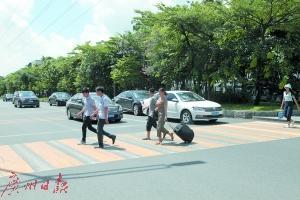 东莞:每月集中整治机动车不礼让斑马线行为