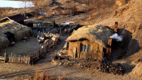 农村的房子大部分是茅草房