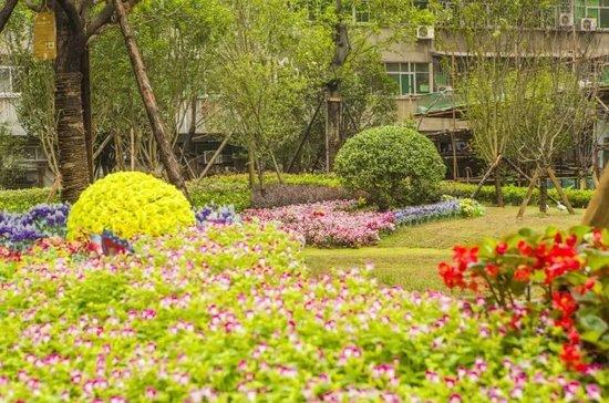 七月将近, 航宇长江国际告诉你如何过一个清凉的夏天