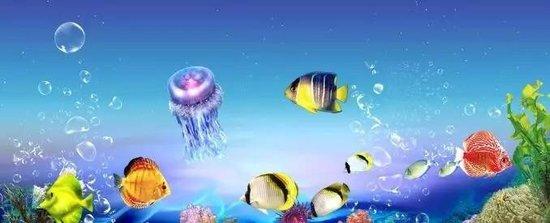 大冶首届海洋节引爆全城,狂卷奇幻海洋风,转发集赞领门票图片