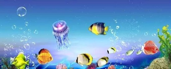 大冶首届海洋节引爆全城 狂卷奇幻海洋风 萌宠派对大狂欢