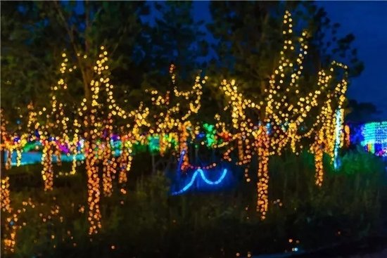 此景只应天上有,灯火阑珊耀天悦,一场一生必看的观影盛宴首秀黄石