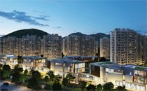 江南国际城