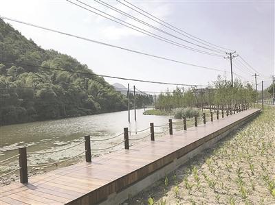 """黄湖""""美丽公路""""整治与造景并举"""