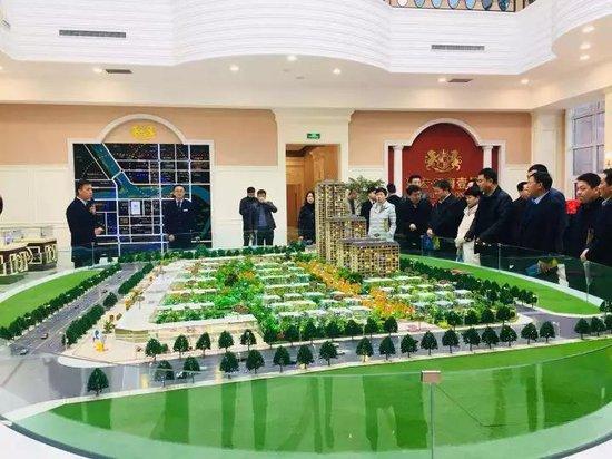南郑区各级政府领导视察海宏·江南壹号项目