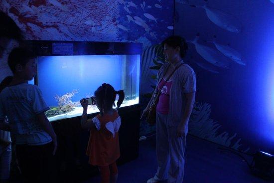 淮北凤凰城:爆棚!海洋节参观者突破3万人上算图纸怎么从工作量图片