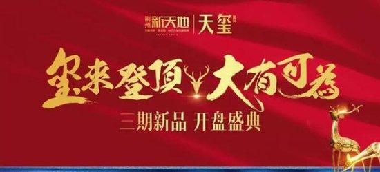 荆州新天地:双十一开盘即售罄
