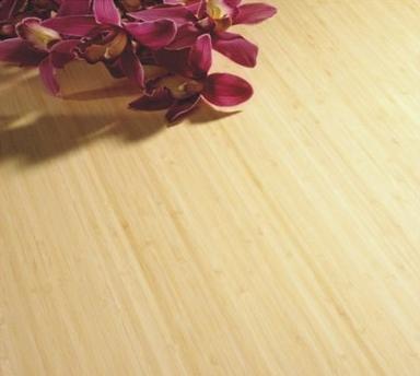 新房装修 如何挑选地板更省钱