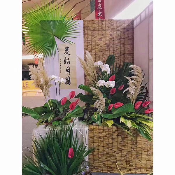 """2017创文知识竞赛总决赛完美收官 QQ family 带您""""飞"""""""