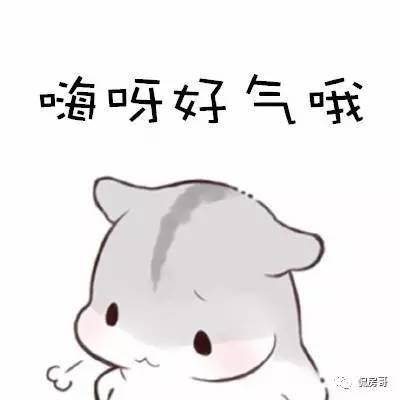 【侃房哥】斗智斗勇租个房:盘点二房东那些让人气出内伤的手段
