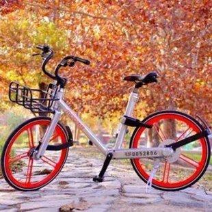 注意!乱骑共享单车可能影响贷款买房