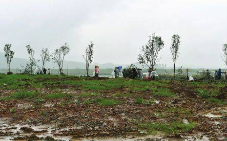 中法农业科技园预计国庆开园