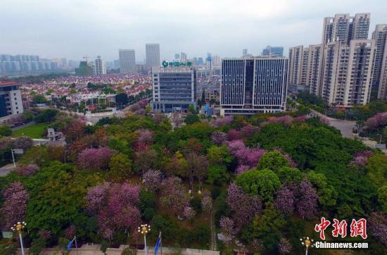专家:目前中国的城市数量太少了