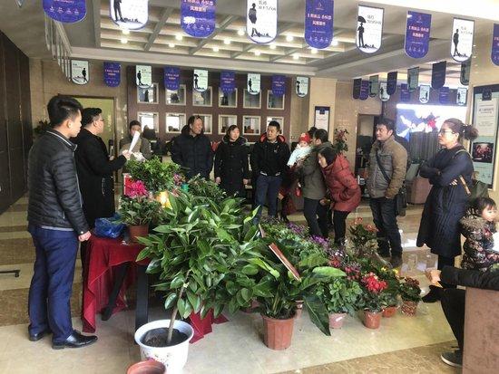 天鹅湖小镇·东区绿植竞猜活动完满落幕