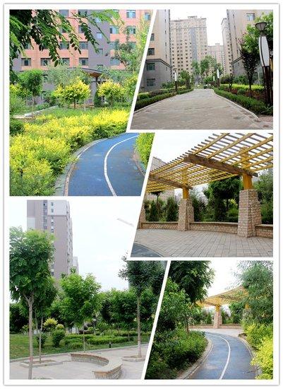 7月雨季,和我在金宇名庭的小道上走一走……