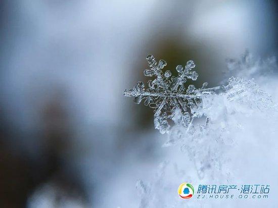 鸿扬·清逸阁|《24节气养生》冬至篇!