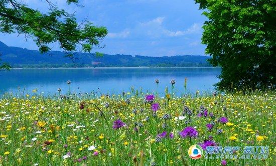 临湖羡景不如择湖而居,藏在房子里的诗与远方