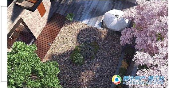 玥珑湖 | 一花一世界 一日一庭院