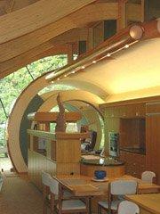 设计师耗时7年雨林里建树屋
