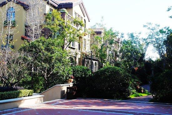 遍寻淮城记忆 倾听维科皇家花园的创作故事