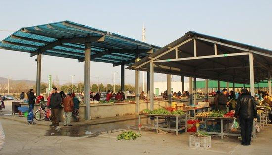 透过山南临时菜市场的变化 看山南未来的发展