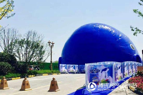 """恒大悦珑湾:""""鲸""""奇之旅 霸屏微信朋友圈"""