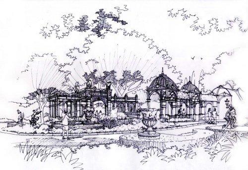 园林景观植物手绘图
