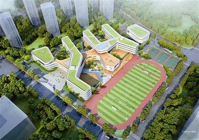 滨江区教育打了翻身仗 多了哪些好学校?图片