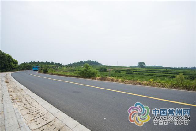 常州农村公路小而美 硬件堪比高速公路图片