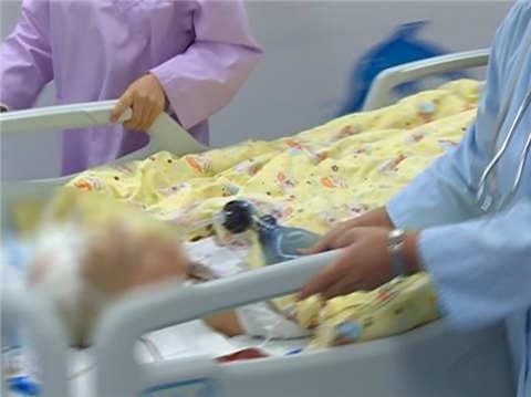 苏州一名3岁男童意外坠楼 系家长看护不慎所致
