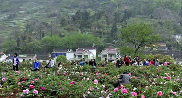 春季悠闲自驾2日游 感受安徽民俗第一村