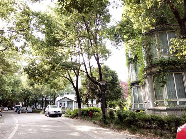 咏梅山庄 121㎡ 358万