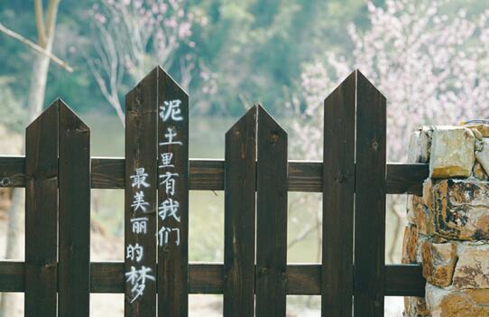 南京有座理想村 拥有一间自己的民宿云云简朴