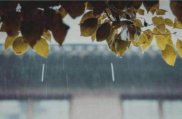 天渐凉!江苏全省今天多云到阴有阵雨或雷雨