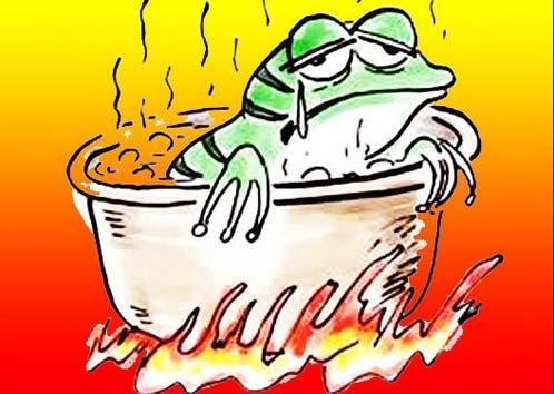 钱折青蛙步骤图解