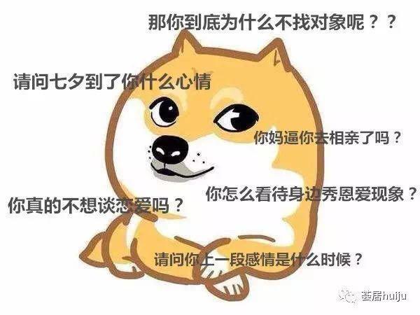 表情狗哈哈哈哈动画信用微能的在x苹果表情单身包吗图片