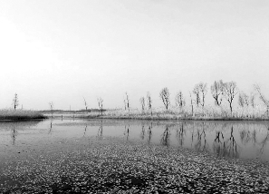 徐州九里湖获批国家湿地公园