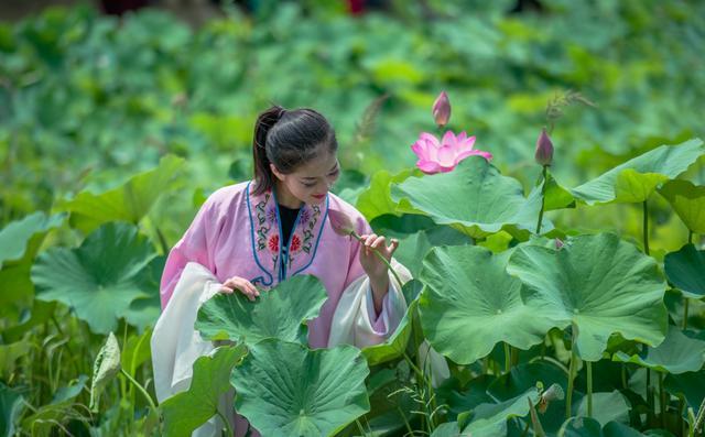 第十届高淳固城湖水慢城荷花旅游节盛大开幕