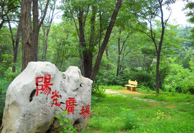 徐州泉山森林公园图片