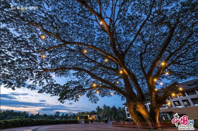 泰国清莱回归初心之旅 远离喧闹的现代化