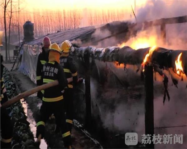 """徐州农户点火为鸭取暖引失火 部分小鸭变""""烤鸭"""""""