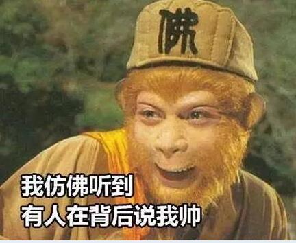 86版西游记表情火爆来袭,收藏好,没它咋过猴搞笑3图忍图片