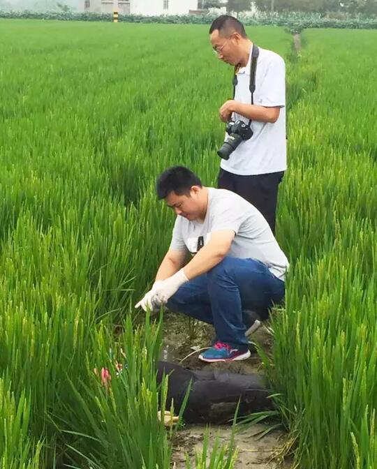 泰州张甸镇发现一无名女尸 经调查已排除他杀可能