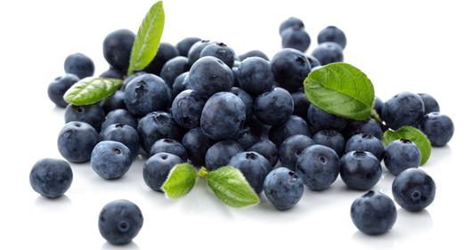 蓝莓的消脂功效