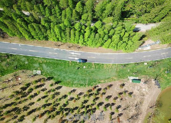 五山公园通过国家评审 南通迎来首个国家森林公园